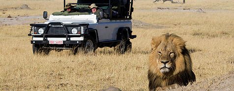 Hwange by Mike Myers - Zimbabwe & Victoria Falls Luxury Safari - Bellingham Safaris