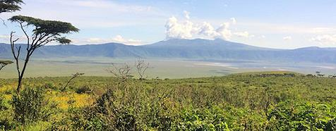Kenya & Tanzania Luxury Safari Tours - Bellingham Safaris