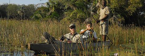 Okavango Delta - Botswana Luxury Wildlife Safari Holidays - Bellingham Safaris