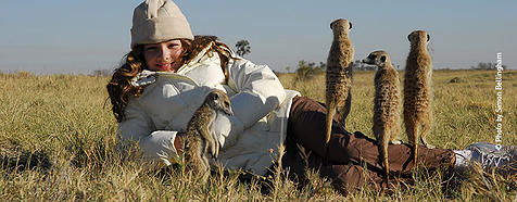 Botswana Luxury Wildlife Safari Holidays - Bellingham Safaris