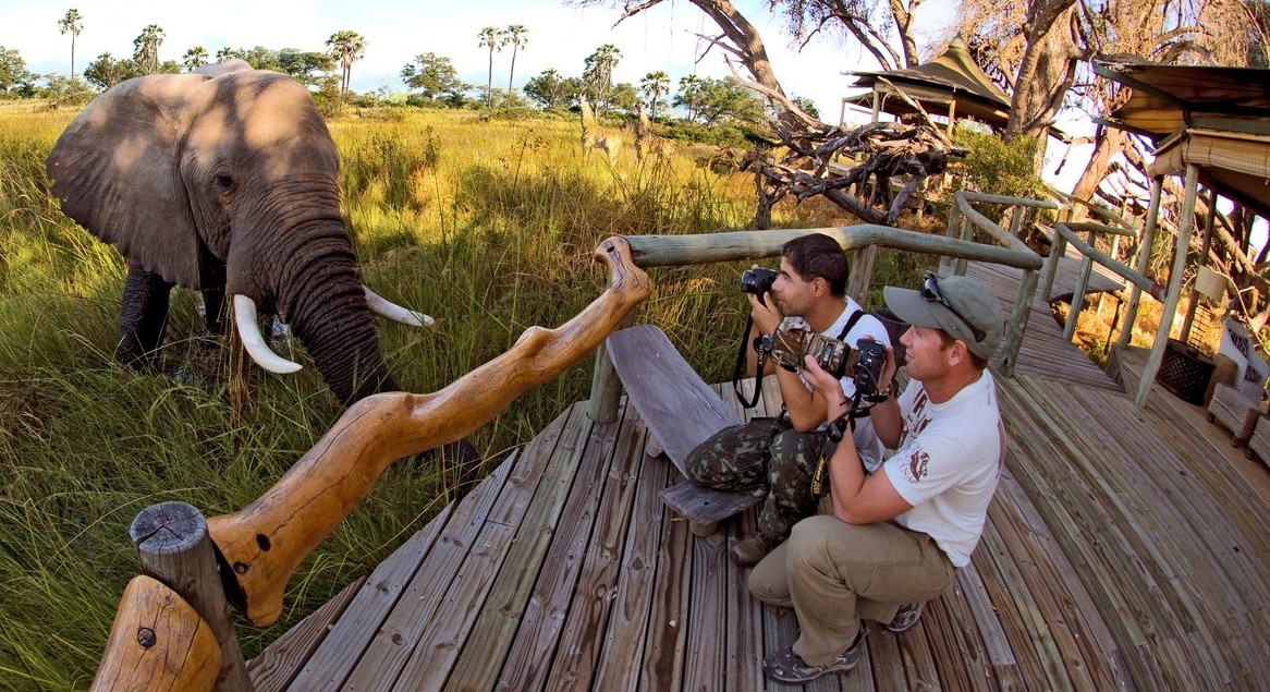 Botswana-Elephant-viewing-by-Simon-Bellingham_copy-e1439375472378